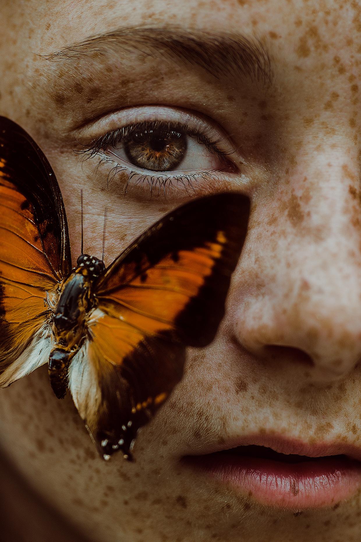Metamorphosis By Jessica Pascucci Design
