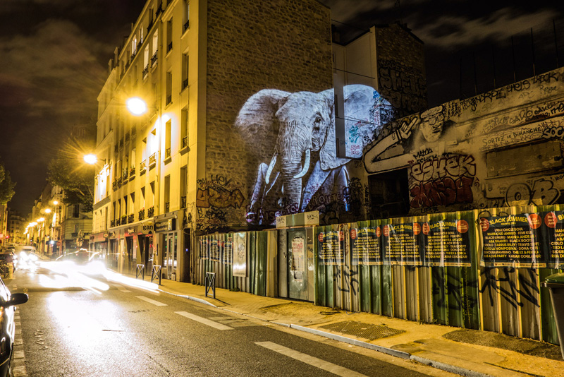 safari-urbain_100915_21