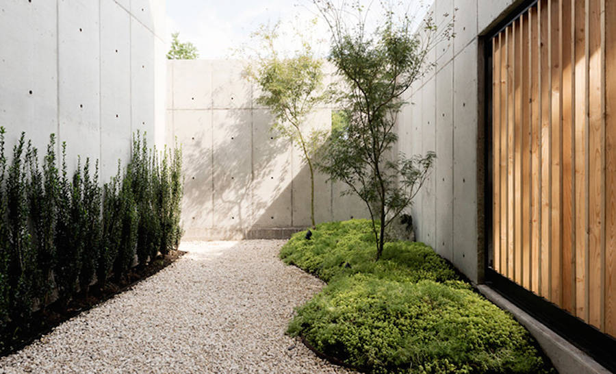 Concrete-box-house-Robertson-design-04-900x546