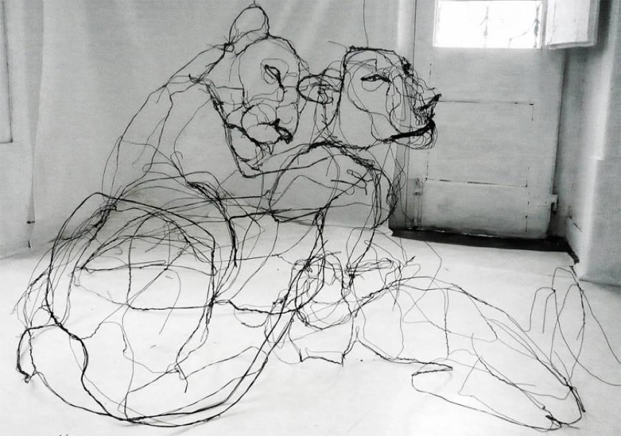 animalwiresculptures1-900x632