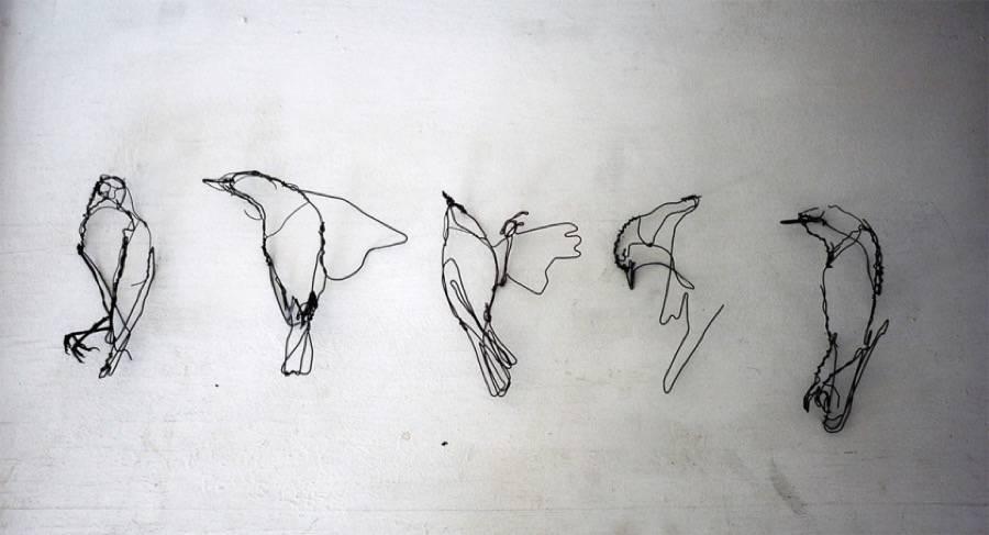 animalwiresculptures3-900x487