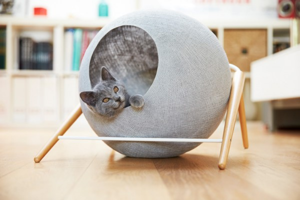 cat-bed_061015_01a