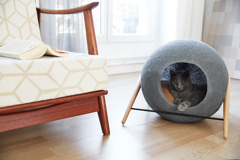 cat-bed_061015_03