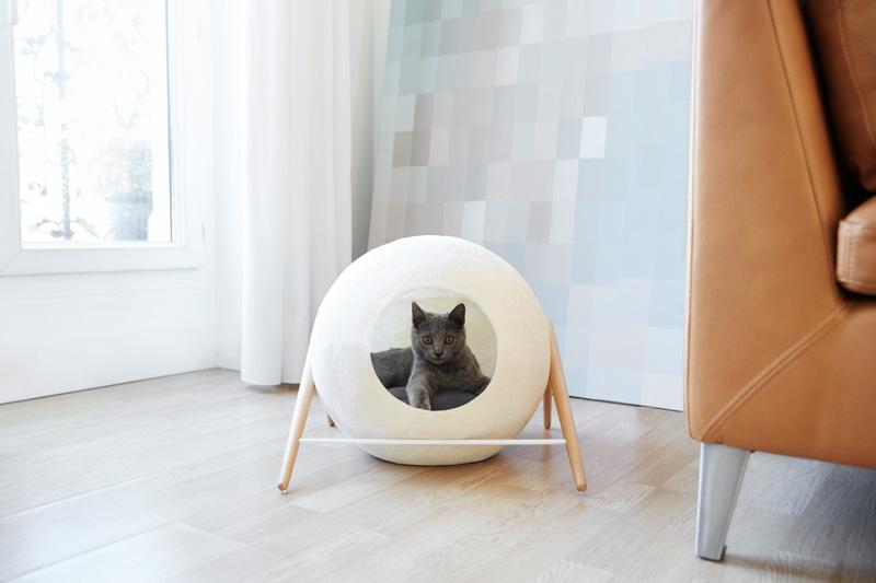 cat-bed_061015_07