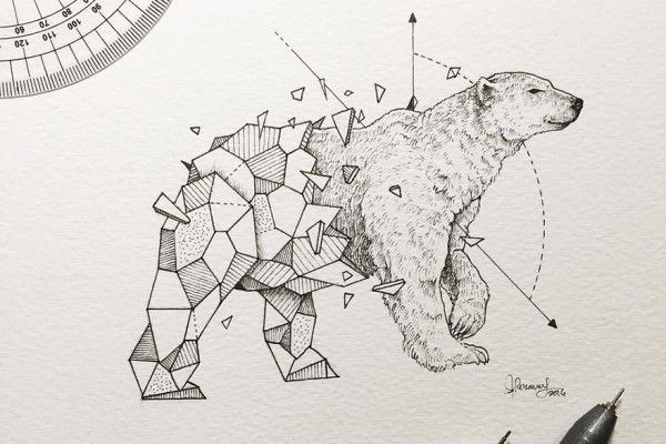 Lovely-Half-Geometrical-Drawings-of-Wild-Animals-1