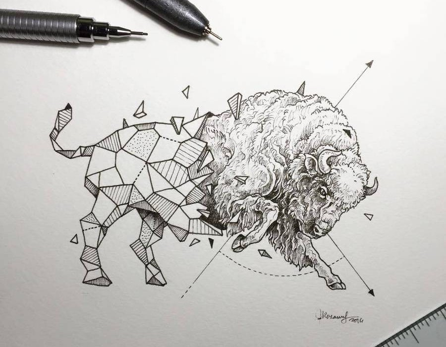 Lovely-Half-Geometrical-Drawings-of-Wild-Animals-11-900x900