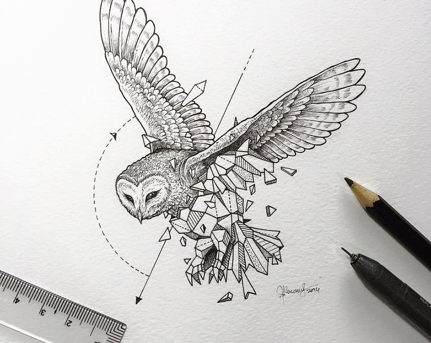 Lovely-Half-Geometrical-Drawings-of-Wild-Animals-3