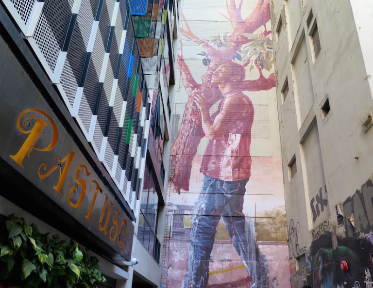 Stunning-Mural-in-Melbourne-by-Fintan-Magee-5