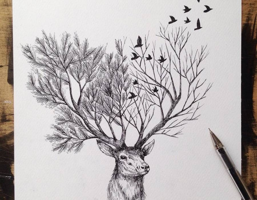 blackinkpenillustrations2-900x799