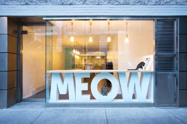 meow-parlour_280316_01