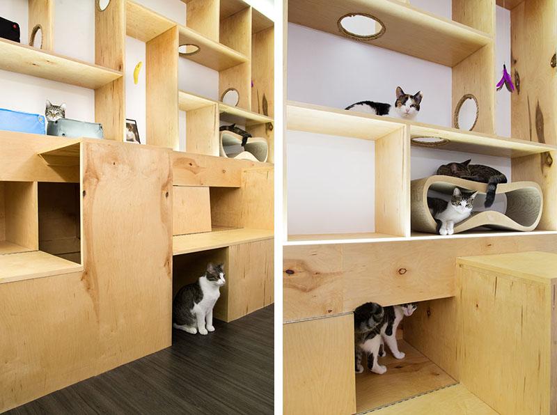 meow-parlour_280316_06