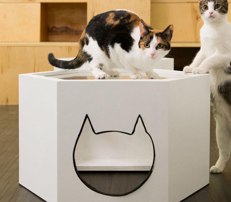 meow-parlour_280316_08
