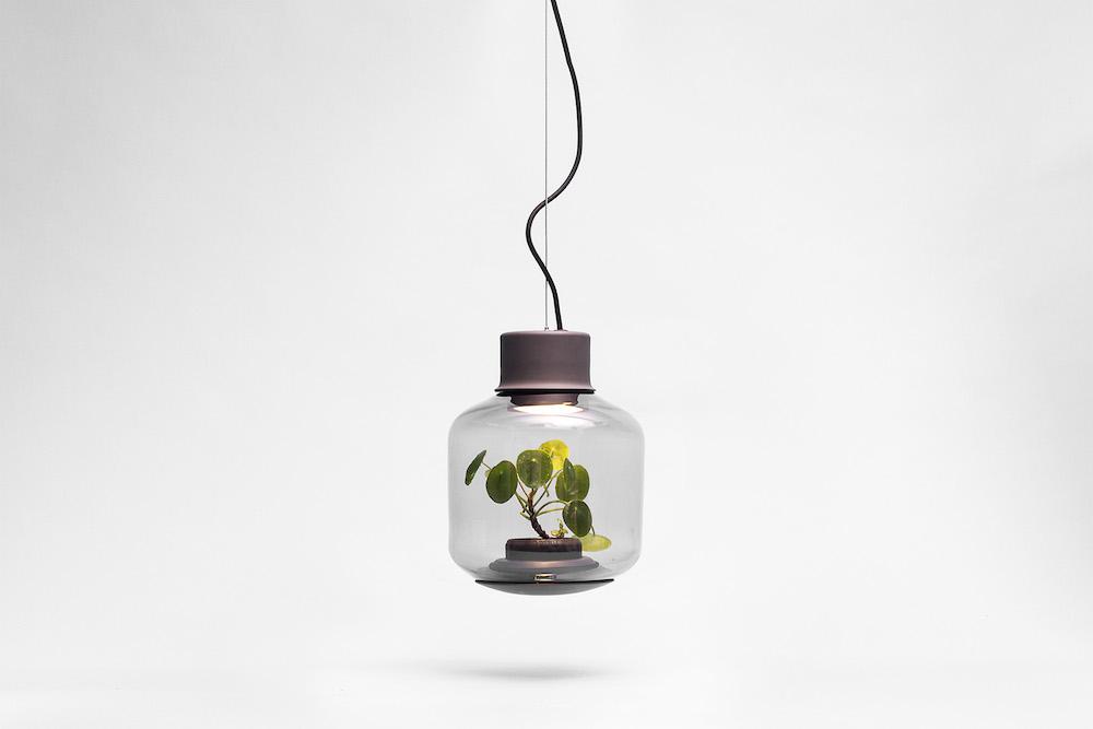 plantlamp_02