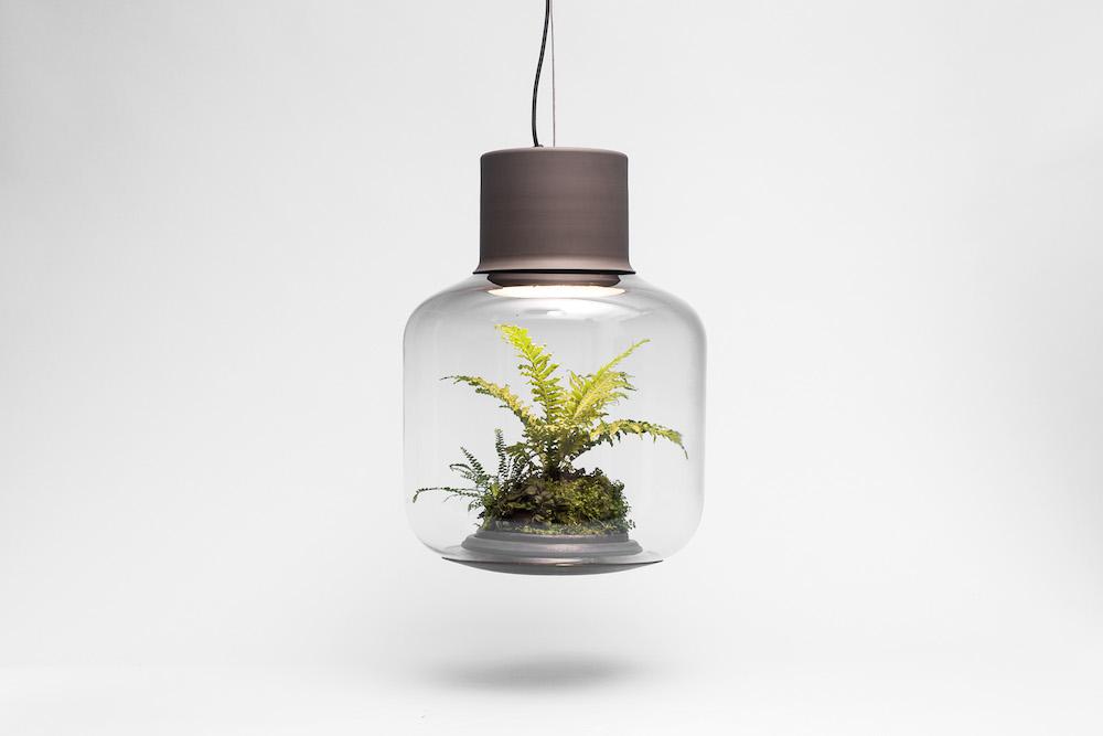 plantlamp_03