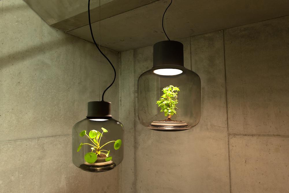 plantlamp_09