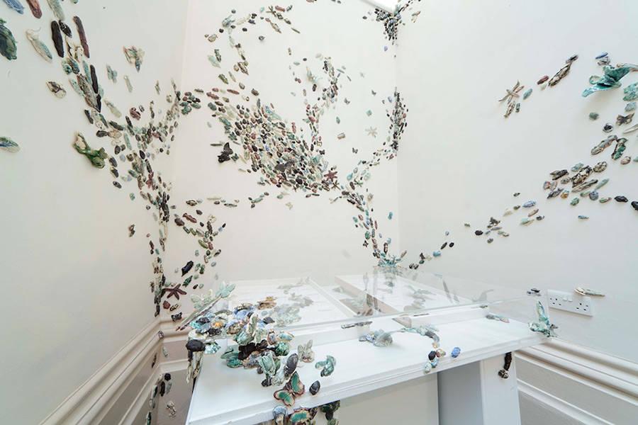 Ceramic-Beetles1-900x600