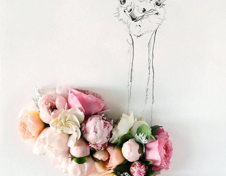 animalillustrationsflowers6-900x1125