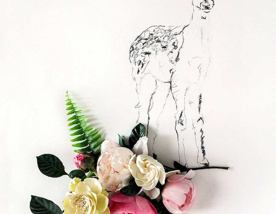 animalillustrationsflowers8-900x1125
