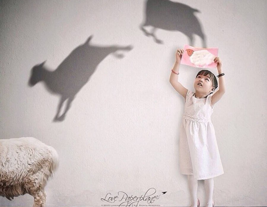 enchanted-shadows9-900x901