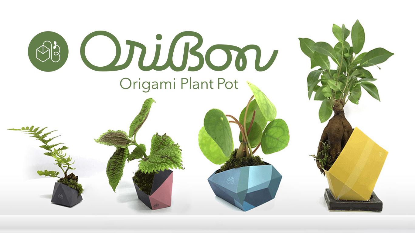 Oribon The First Origami Plant Pot Design