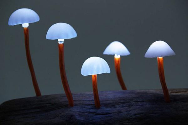 mushroomled-00-900x675