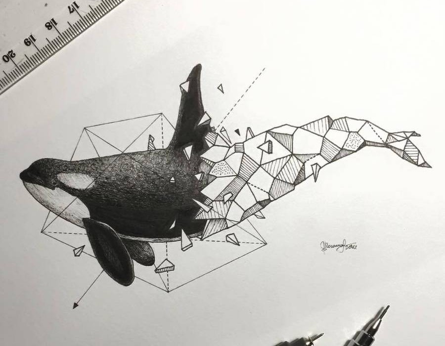 Lovely-Half-Geometrical-Drawings-of-Wild-Animals-12-900x900