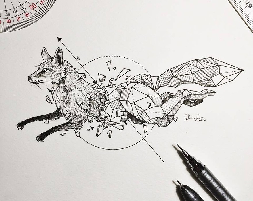 Lovely-Half-Geometrical-Drawings-of-Wild-Animals-2