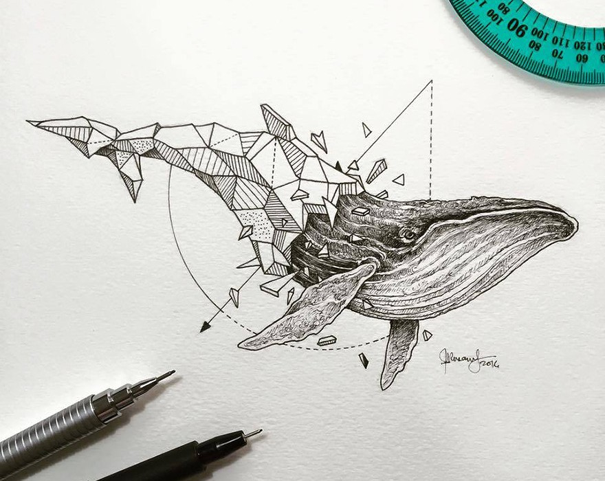 Lovely-Half-Geometrical-Drawings-of-Wild-Animals-4