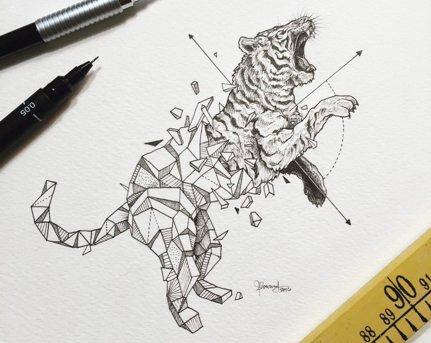Lovely-Half-Geometrical-Drawings-of-Wild-Animals-6