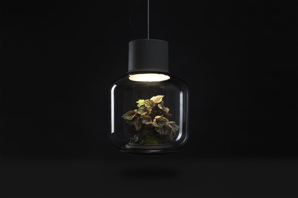 plantlamp_05