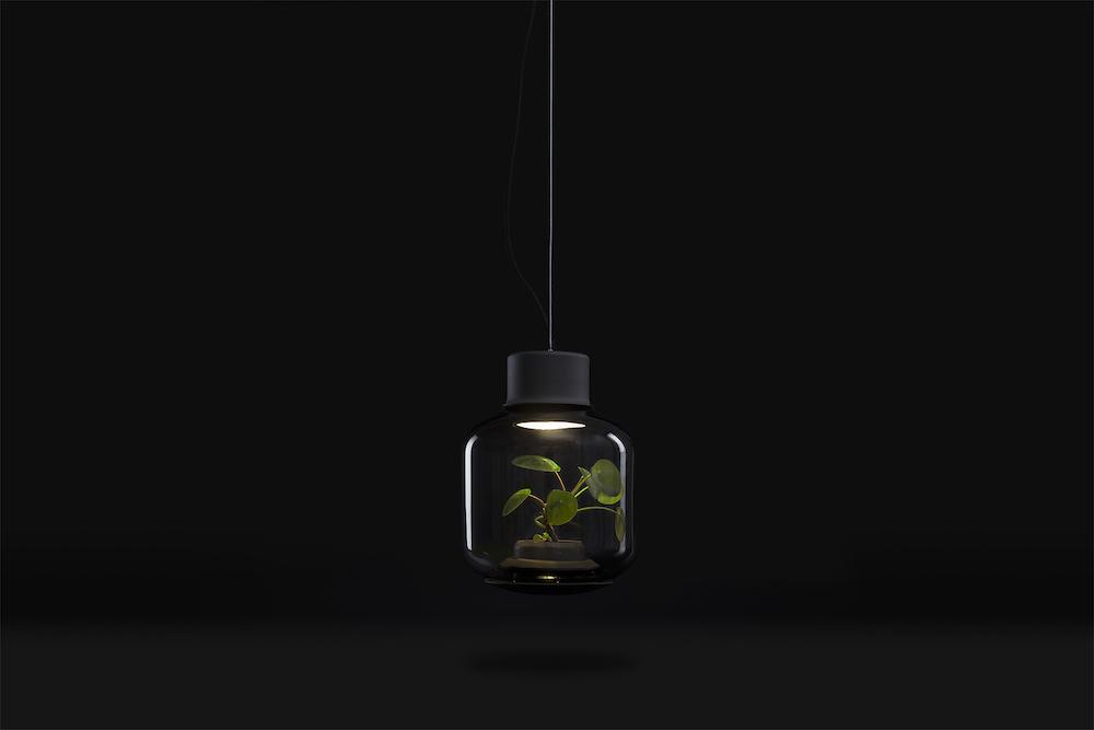 plantlamp_06