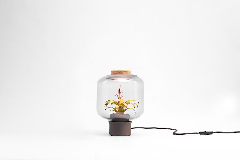 plantlamp_07