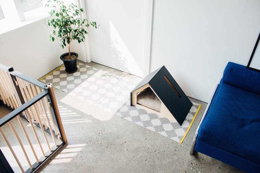 Minimal-Dog-Houses4-900x600