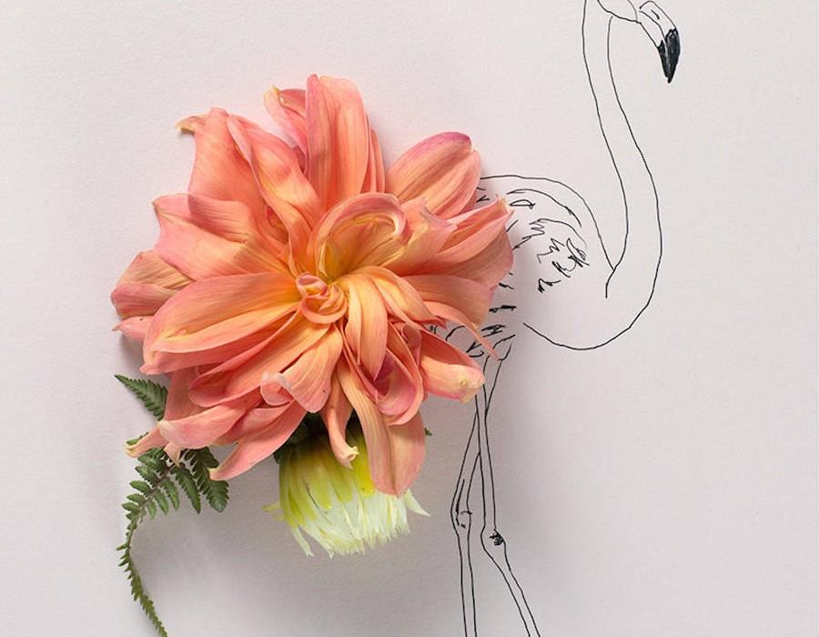 animalillustrationsflowers13-900x1125