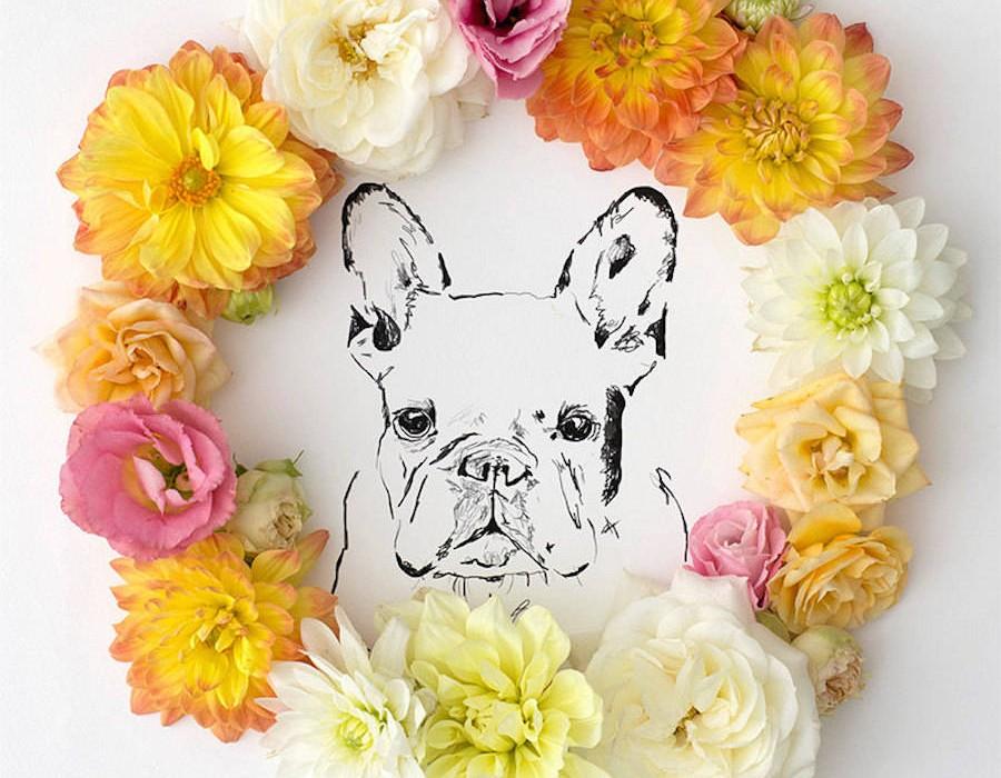 animalillustrationsflowers14-900x1125
