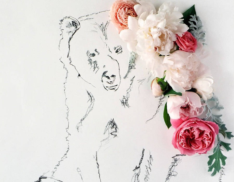 animalillustrationsflowers4-900x1125