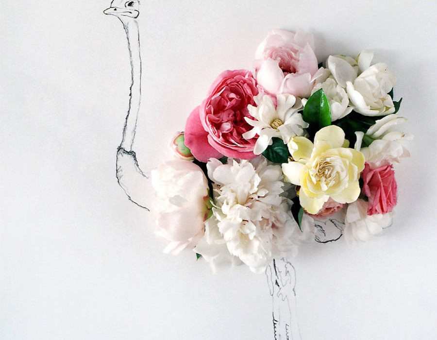 animalillustrationsflowers7-900x1125