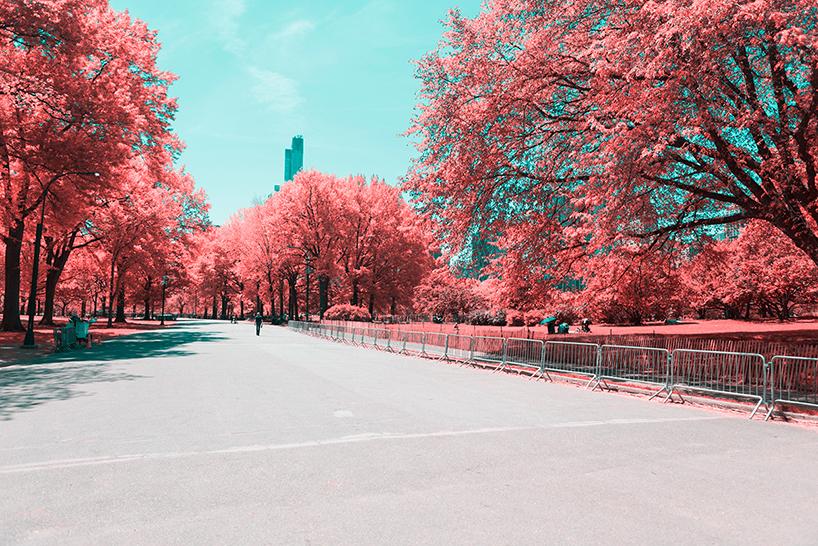 paolo-pettigiani-infrared-new-york-city-designboom-05