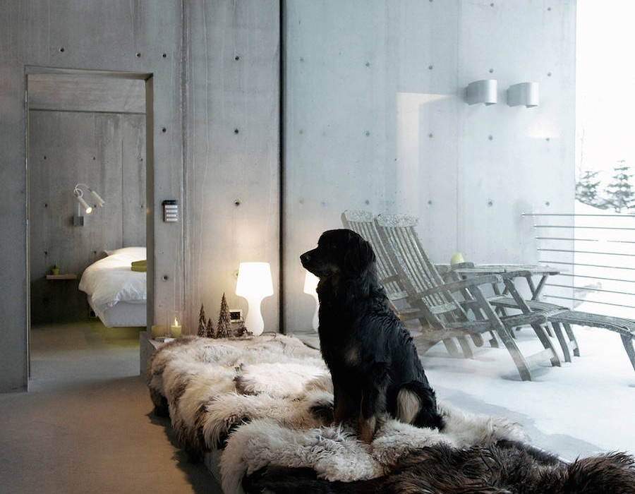 modern-concrete-house-in-norway-3-900x1350