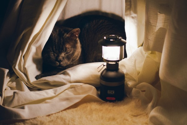 Lunar: Essential multi functional lighting source