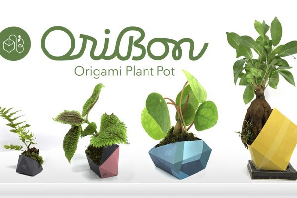 OriBon – The First Origami Plant Pot