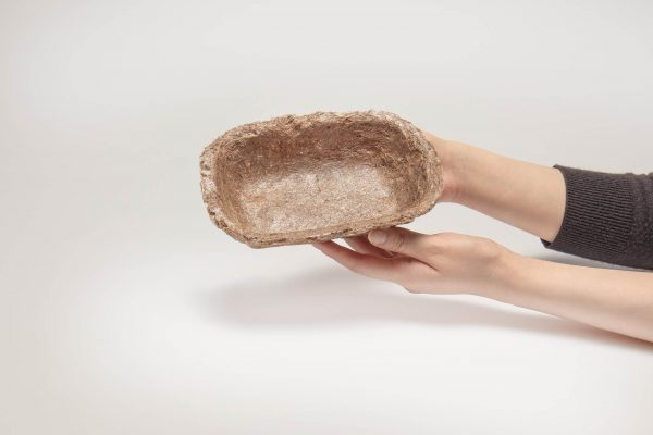 POC: Seagrass Packaging by Felix Pöttinger